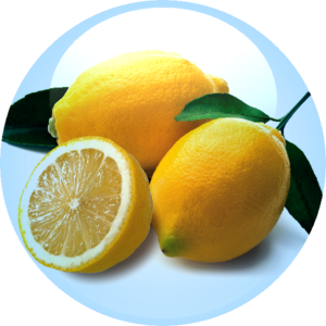 Citrus Fruit Extract