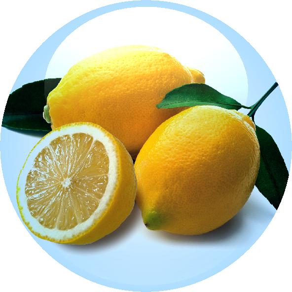 Citrus Fruit Extract
