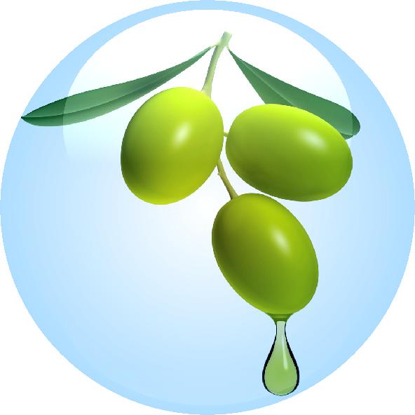 Olive Fruit Oil