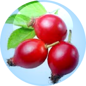 Rosehip Fruit Oil